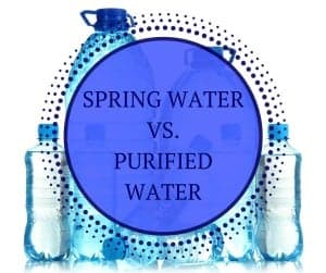 Spring Vs. Purified Water | Lipsey Water